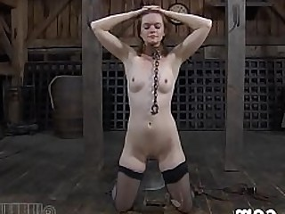 BDSM Blowjob Big Cock Doggy Style Fuck Hardcore Hot Kitty